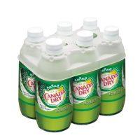 Canada Dry Ginger Ale 10oz 6pk bt